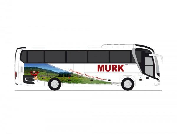 87 MAN Lion's Coach'17 'Murk-Reisen' NH2020(03)