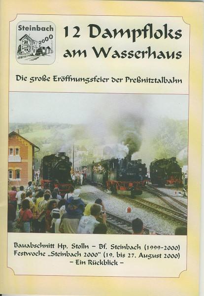 Buch 12 Dampfloks am Wasserhaus - Die große Eröffnungsfeier der Preßnitztalbahn