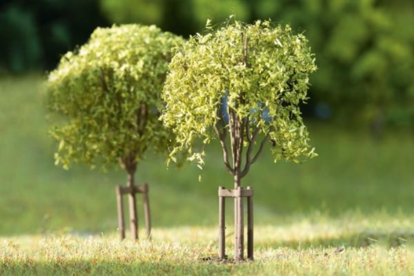 H0 Laubbäume, frisch gepflanzt 10-Sütck