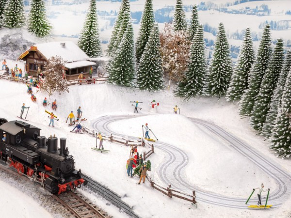 H0 Langlauf Loipe / Apres-Ski Hütte NH2020