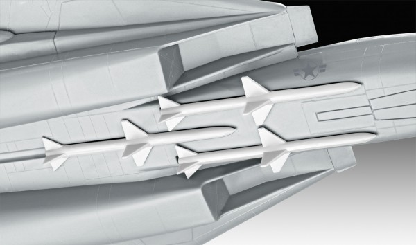 F-14 Tomcat 'Top Gun'