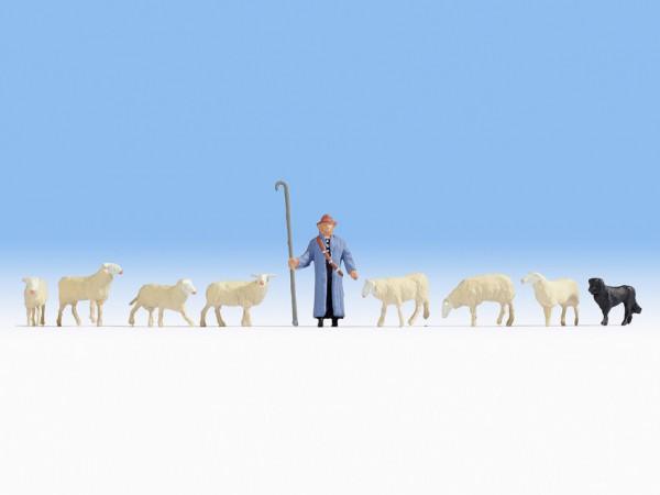 N Schafe und Schäfer